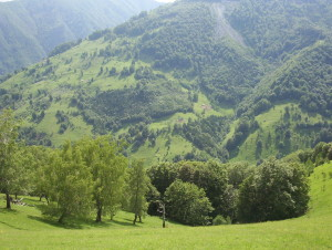 A favorite, beautiful Romanian hillside