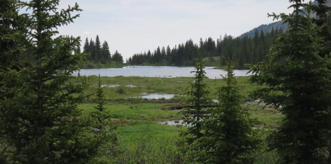 Browns Lake