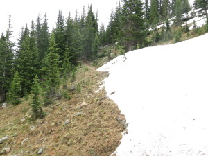 Snowpack still covers parts of trail on July 1st, but only barely.